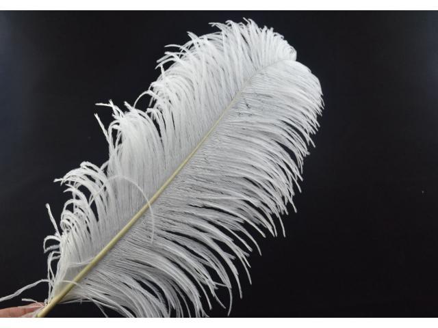 plumas de avestruz para decoración y carnavales - 1/3