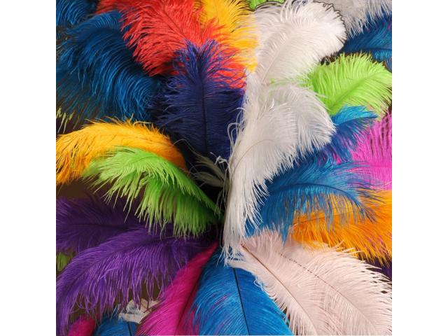 plumas de avestruz para decoración y carnavales - 2/3