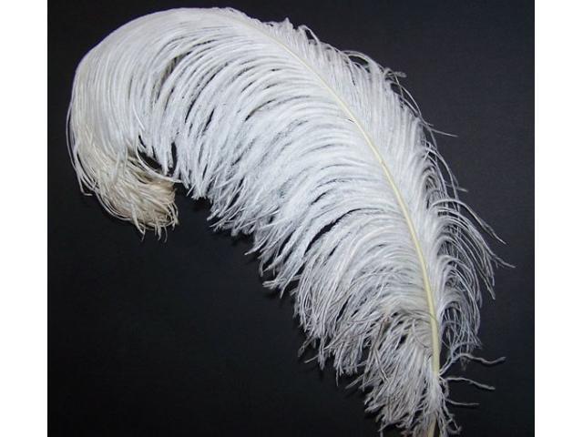 plumas de avestruz para decoración y carnavales - 3/3