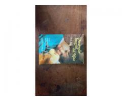 Libro Desarrollo Integral Del Niño (guia Para Padres)