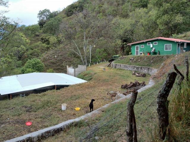 Hermosa casa de campo con 6500 mts cuadrados de terreno Granja finca con Galpon y deposito - 2/6