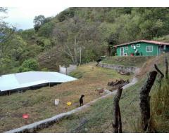 Hermosa casa de campo con 6500 mts cuadrados de terreno Granja finca con Galpon y deposito - Imagen 2/6