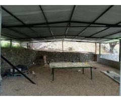 Hermosa casa de campo con 6500 mts cuadrados de terreno Granja finca con Galpon y deposito - Imagen 5/6