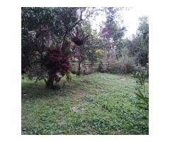 terrenos para sembrar o construir
