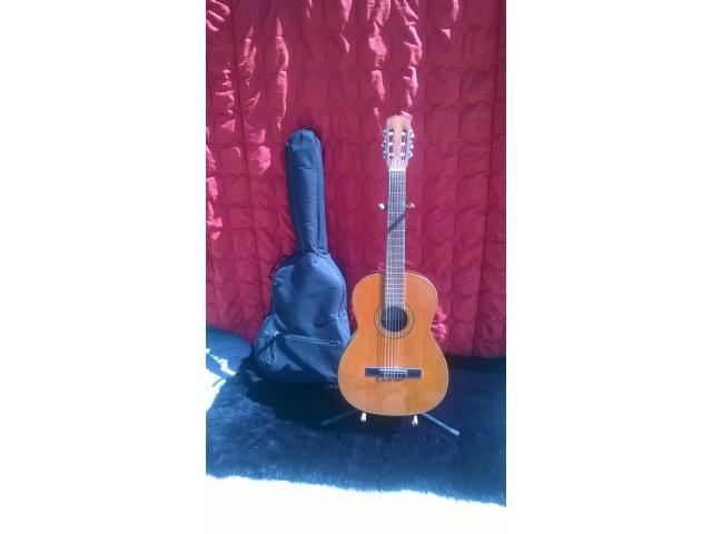 Guitarra acustica prudencio Saez - 1/1