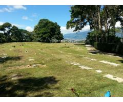 Vendo parcela cementerio del este