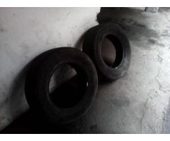 cauchos - Imagen 4/5