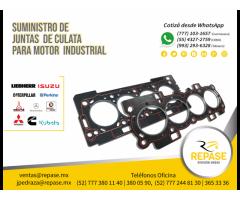 SUMINISTRO DE JUNTA CULATA PARA MOTOR INDUSTRIAL