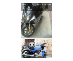 Moto Horse y Matrix elegance