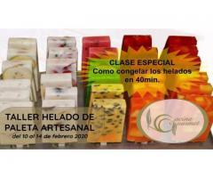 TALLER DE HELADO DE PALETA ARTESANAL del 10 al 14 de febrero 2020 - Imagen 6/6