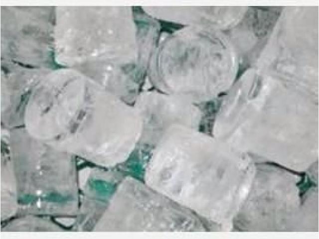 distribuidora la montaña del hielo 2055 f.p - 2/5