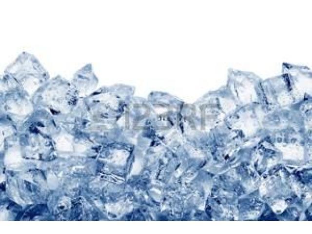 distribuidora la montaña del hielo 2055 f.p - 5/5