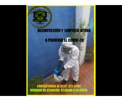 Empresa de fumigación en caracas  servicio contra chiripas - Imagen 4/6