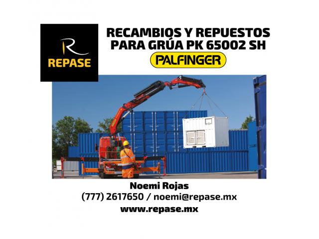 RECAMBIOS Y REPUESTOS PARA GRUAS PK 65002 SH PALFINGER - 1/1