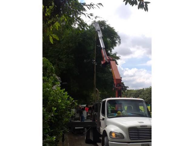 Camiones con Brazo Hidráulico Alquiler y Logistica - 6/6