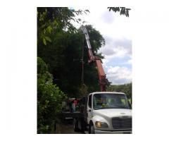 Camiones con Brazo Hidráulico Alquiler y Logistica - Imagen 6/6