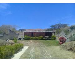CASA Y TERRENO CARIALINDA NAGUANAGUA VENDE FRANK BETANCOURT 04244700538 - Imagen 5/6