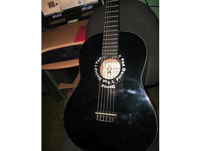 Guitarra Electro Acustica Marca  Palmer - 1/4