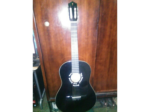 Guitarra Electro Acustica Marca  Palmer - 3/4