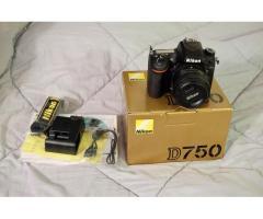 Sony ALPHA A7III, Sony FX6, Nikon Z6, Nikon D600, Canon 70D, Canon 60D