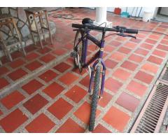 bicicleta ring 26