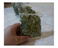 Estevia hojas deshidratadas edulcorante natural