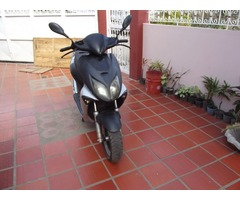moto matrix elegance