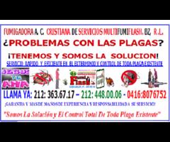 FUMIGADORA  A. C. CRISTIANA DE SERVICIOS MULTIFUMIFLASH. BZ, R .L.