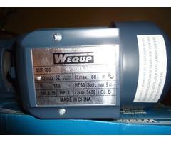 Bomba de Agua 1HP Marca: WEQUP - Imagen 4/5
