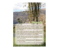 bienestar saludable  nutrición naturaldistribuidores
