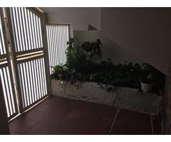 Townhouse  semiamoblado en zona centrica - Imagen 5/5