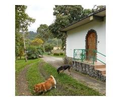 Caripe Casa Posada