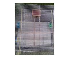 Jaula Grande para aves con accesorios - Imagen 2/4