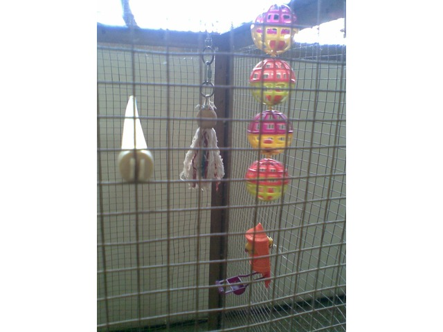 Jaula voladora con mucho espacio ideal para periquitos - 3/6
