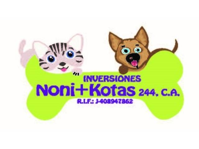 INVERSIONES NONI+KOTAS 244, C.A. - 1/6