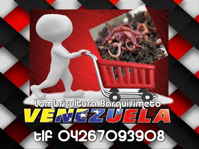 Lombrices Californianas en Venezuela, Lombrricultura Barquisimeto tlf 04267093808 - 1/1