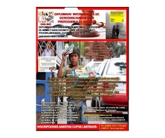 DIPLOMADO ONLINE INTERNACIONAL DDHH EN PROTECCIÓN A LA INFANCIA