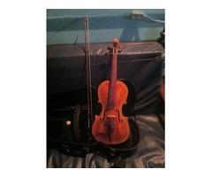 violin profesional y bajo electrico 5 cuerdas