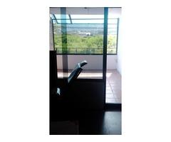 ALQUILO LOCAL COMERCIAL EN SAN DIEGO. Ubicación ideal para línea de Taxis y afines - Imagen 3/5