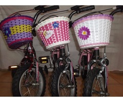 Bicicleta para Niña Rin 12