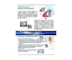 CAMARAS HIPERBARICAS FABRICACION ASESORIA INSTALACION - Imagen 3/5