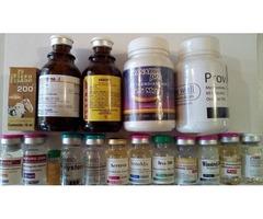 Esteroides aragua todo en anabolicos